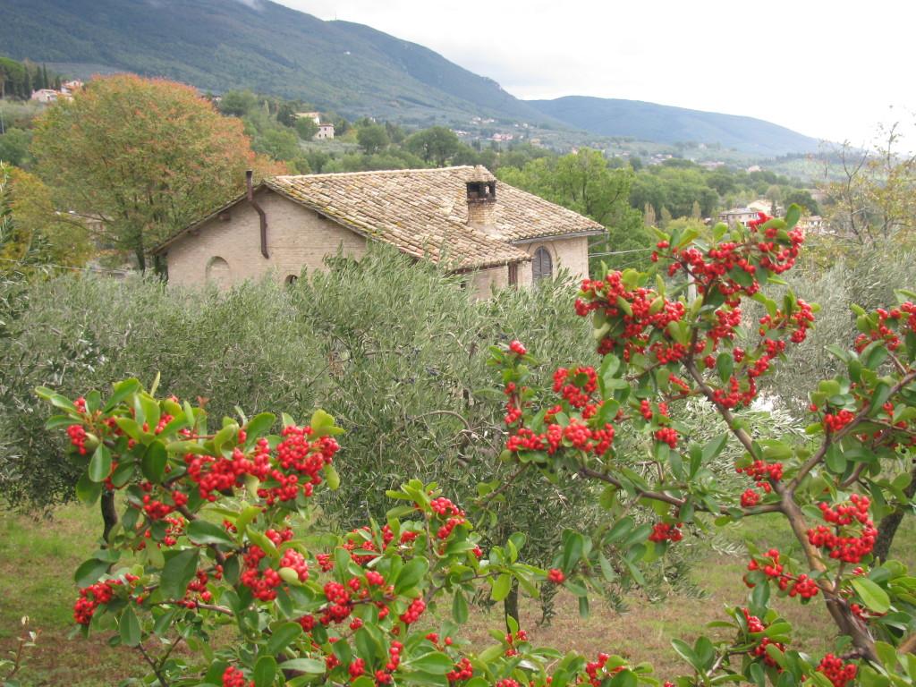 Умбрия. Италия
