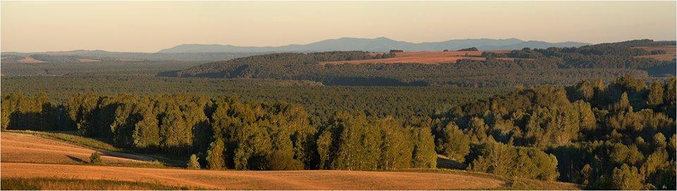 Пейзаж Солтонского района Алтайского края - долина Бии.