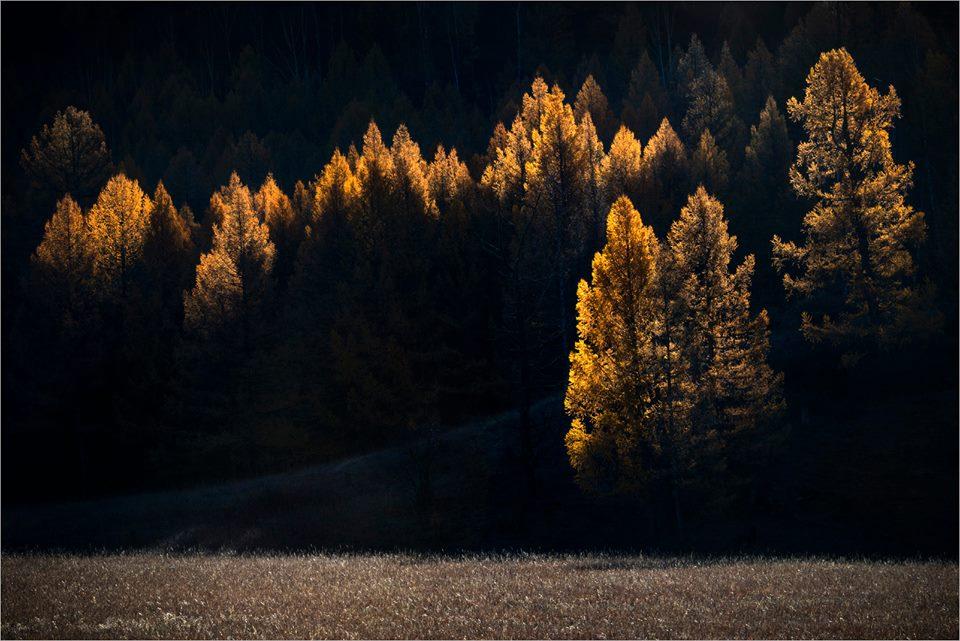 На закате осени