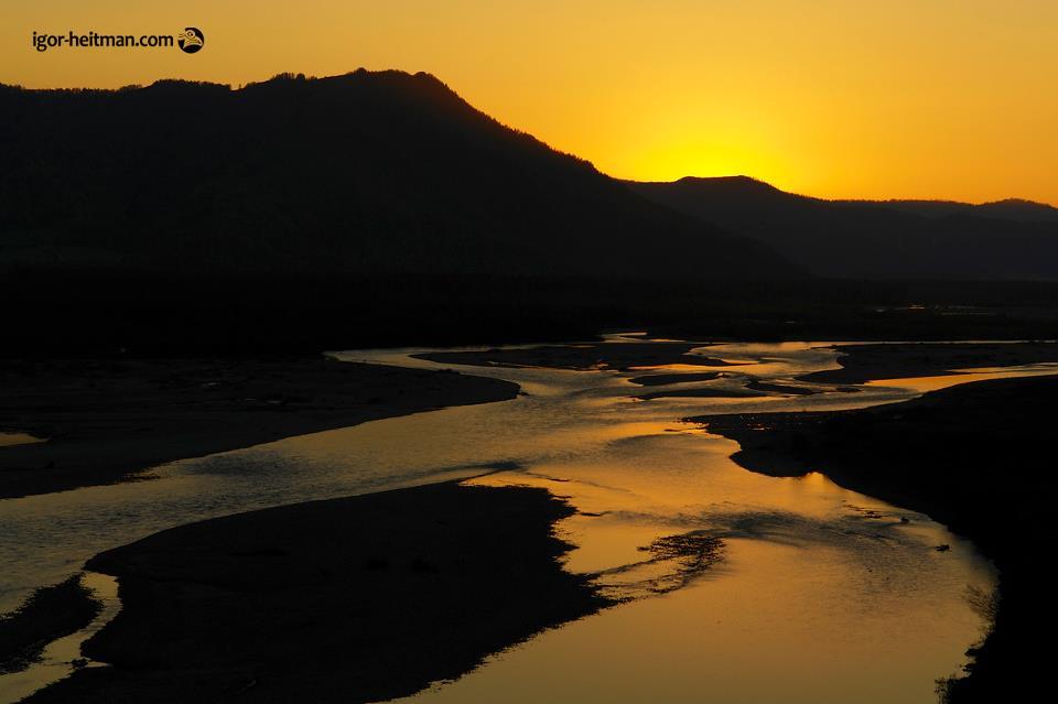 Катунь в Уймонской долине. Фото: Игорь Хайтман