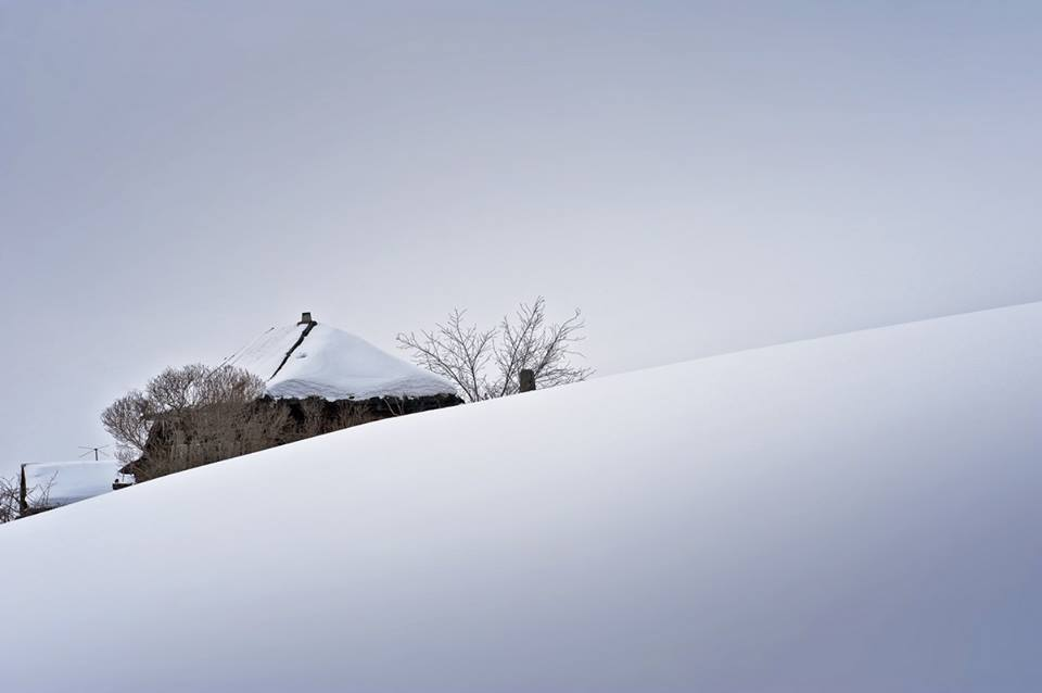 Полдень.  Фото: Ирина Лукьянцева