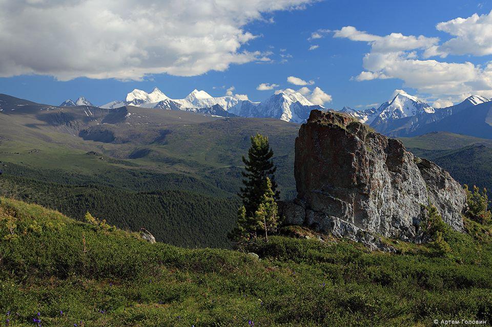 Белуха с Ороктойской тропы. Фото: Артем Головин