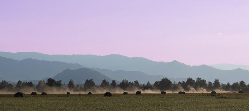 Уймонская долина на закате. Фото: Миша Родкин