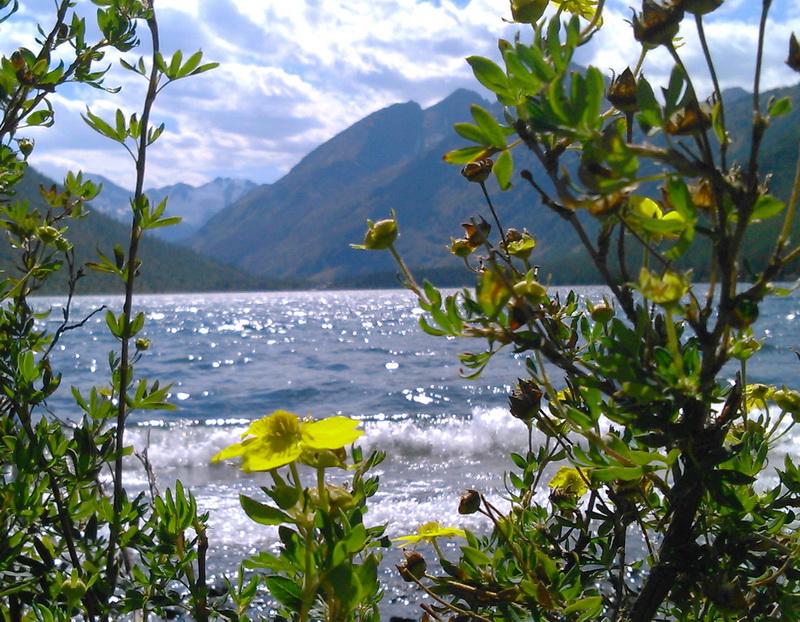 На берегу Нижнего Мультинского озера. Фото: Марианна Яцышина