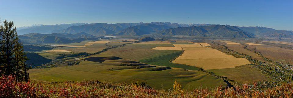 Панорама Уймонской долины. Фото: Вячеслав Левицкий