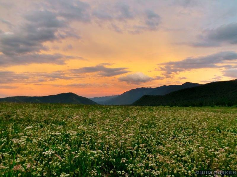 Вечер в окрестности Уймонской долины. Фото: Миша Родкин
