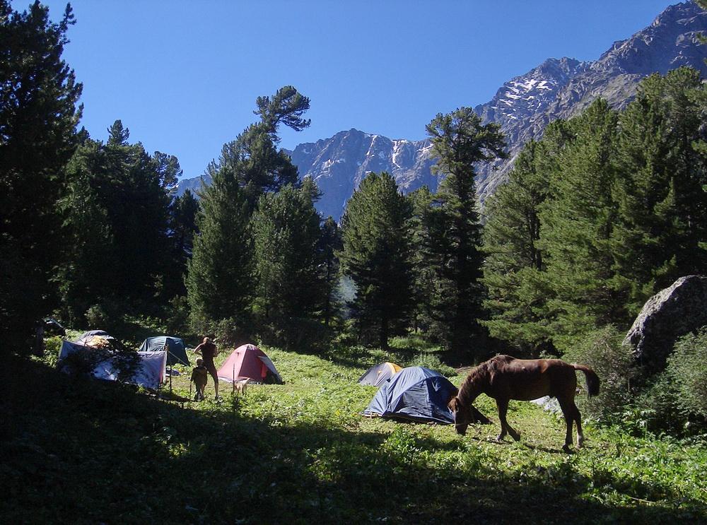 Палаточный лагерь.  Фото: Айю