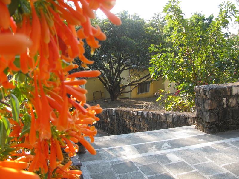 Дхамма-центр в декабре. Дехрадун, Северная Индия