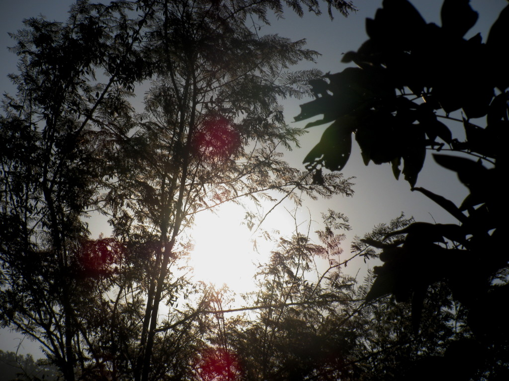Небо над дхамма центром в Дехрадуне