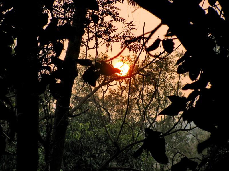 Зимний закат на севере Индии