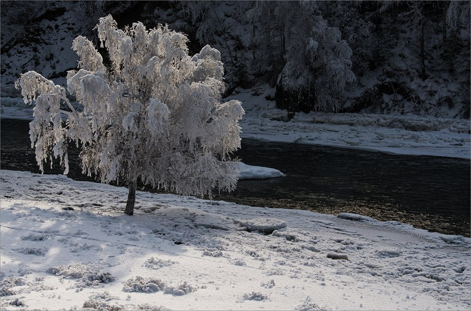 Зимний сон на брегах древней реки Чуи