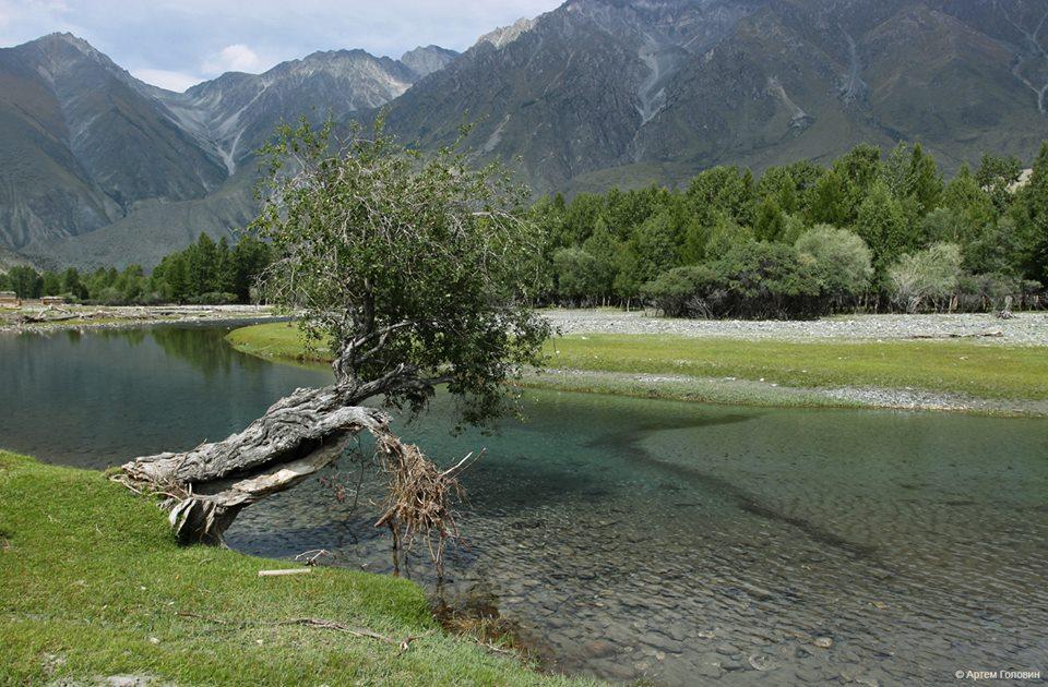Река Куркуре Аргутская и села Аргут