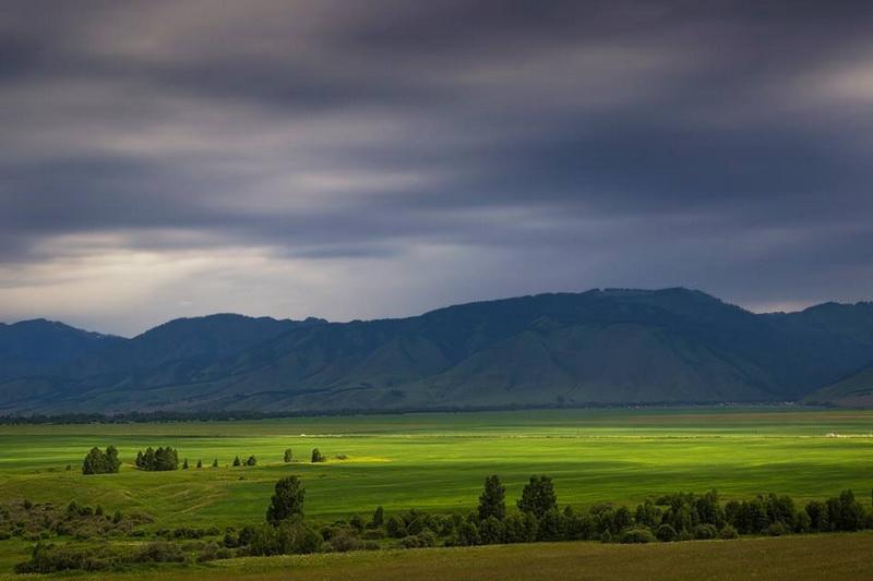Уймонская долина. Фото: Вадим Кононенко