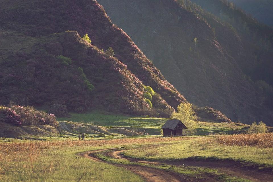 Май в Горном Алтае. Фото: Вадим Кононенко