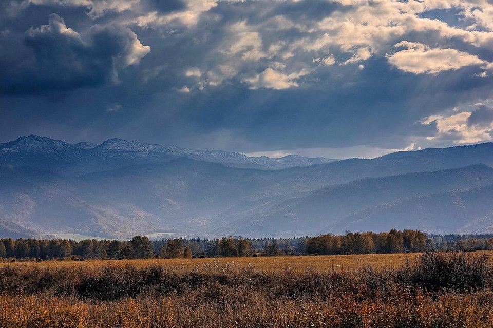 Уймонская долина. Фото: Андрей Кузнецов